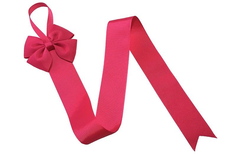 Berg je haarspeldjes en strikken handig op aan dit mooie bewaarlint.  Dit bewaarlint is van fuchsia roze lint met bovenaan een vrolijke grote fuchsia roze strik.  De lengte van het lint is ongeveer 56 centimeter en het lint is ongeveer 4 centimeter breed. De stoffen strik is 8 centimeter breed. Tip: ook leuk om kado te geven!