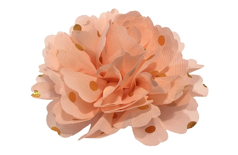 Vrolijke grote creme haarbloem van chiffon met gouden stipjes.  Op een handig haarknipje met kleine tandjes van ongeveer 5 centimeter. Half bekleed met zalm roze lint.
